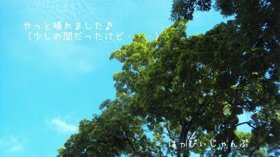 DSC07578_convert_20120608051703.jpg