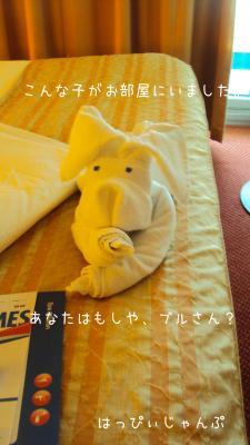 DSC07878_convert_20120620110837.jpg