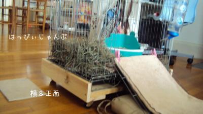 DSC08880_convert_20120709094611.jpg