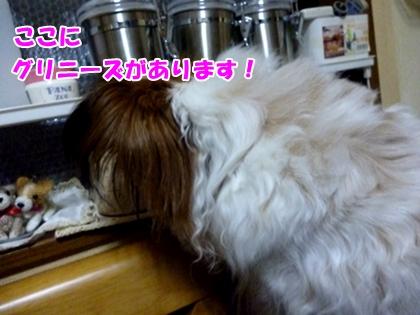 食いしん坊2