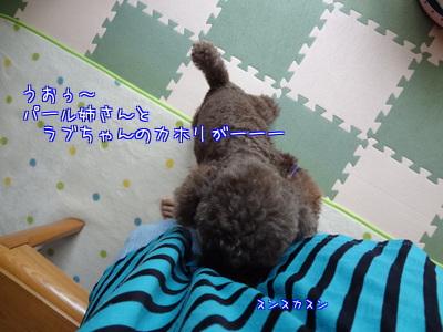 x1APVIwg7dGJ6H9.jpg