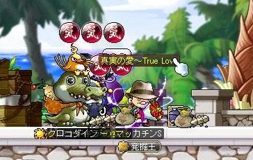 Maple11929a.jpg