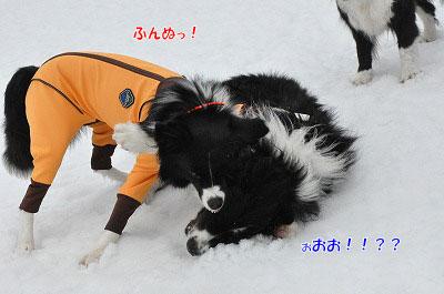 20140202_wan05.jpg