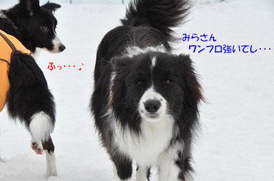 20140202_wan10.jpg