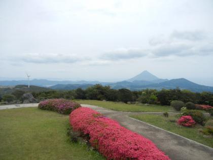 2012_04_29_nagasakibana_03.jpg