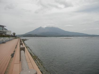 2012_04_29_nagasakibana_12.jpg