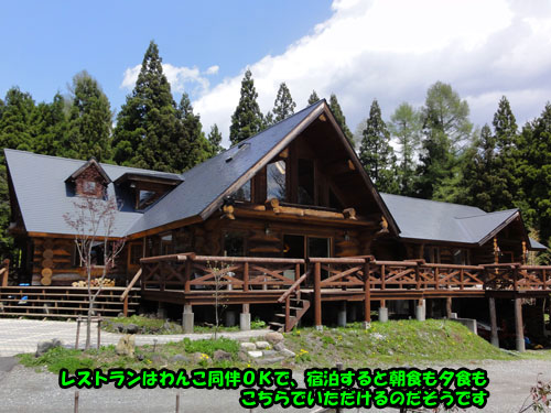 DSC07345.jpg