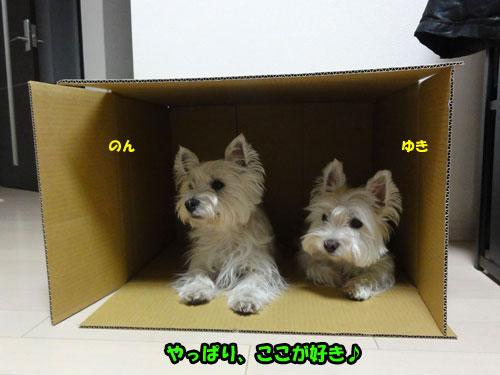 DSC07746.jpg