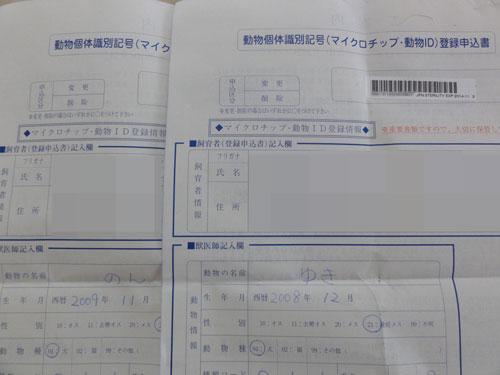 DSC08426.jpg