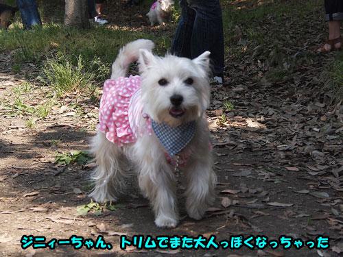 P5273659.jpg