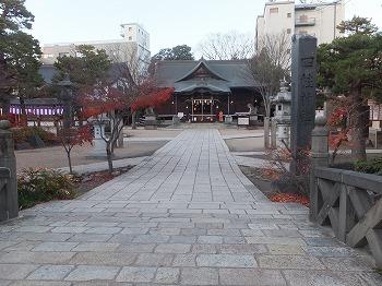matsumoto21.jpg