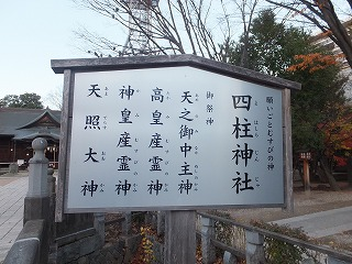 matsumoto22.jpg