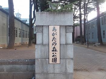 matsumoto83.jpg