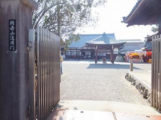 matsusaka37.jpg