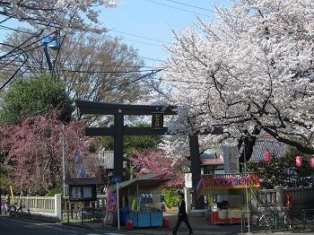 nakano-street47.jpg