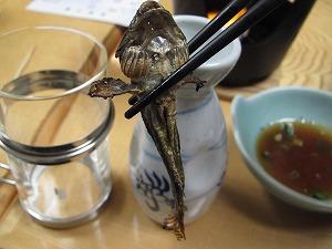 uonuma-kamiyu14.jpg