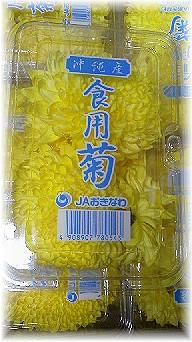 食用菊-1