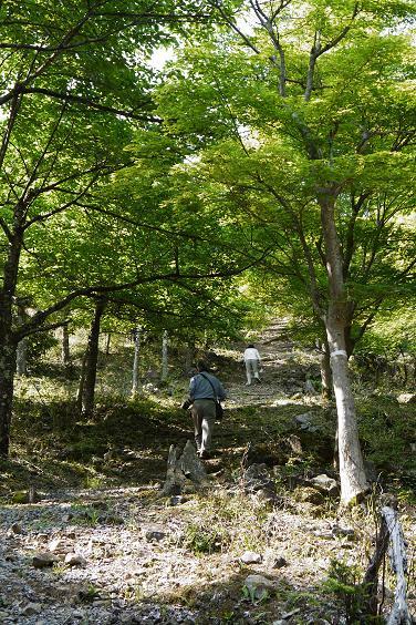 takedajyouseki120527-010b