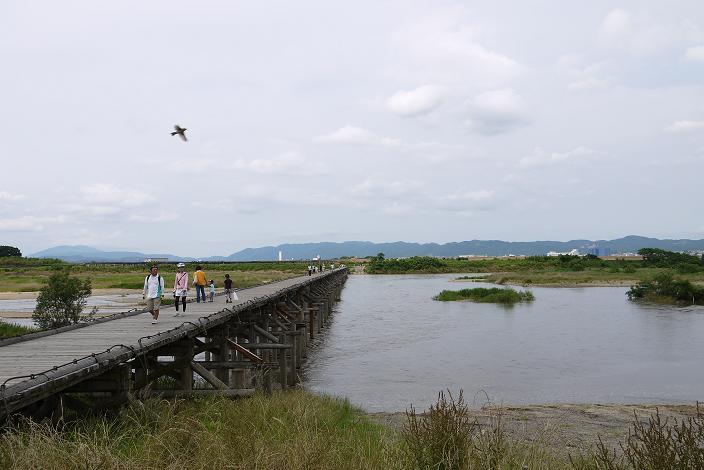 nagarebasi1206-007b