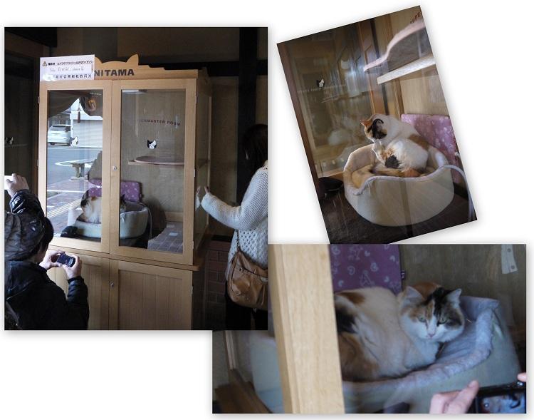 hyouketukokudou480-1212-013b.jpg