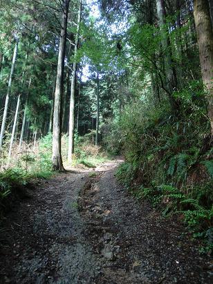 kaidannfudou-r704-009b