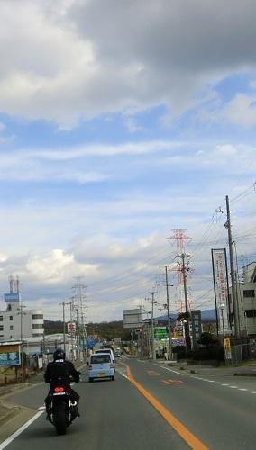 naritasan-pine1301-016b.jpg