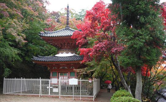 usitakiyama1211-010p