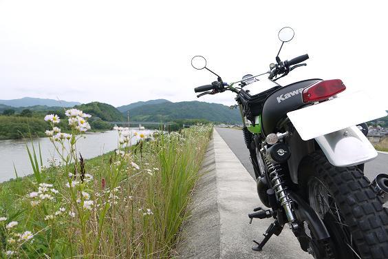 wazukanocyabatake1206-201b