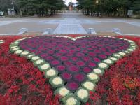 BL130103鶴舞公園1IMG_1059