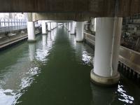 BL140120京橋からラン3P1040131