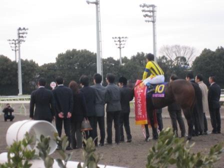 メーデイヤ(TCK女王盃)