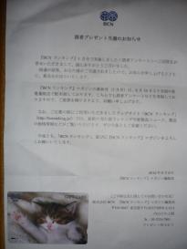 クオカード(500円分)