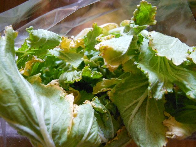 土付きお野菜の比較3