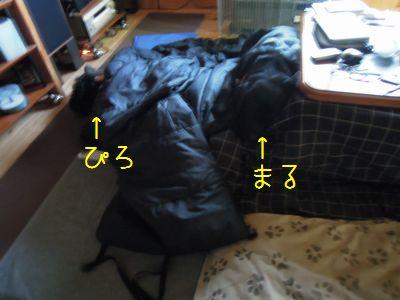 b20141206-DSCN6921.jpg
