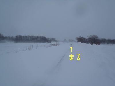 b20141217-P1010261.jpg