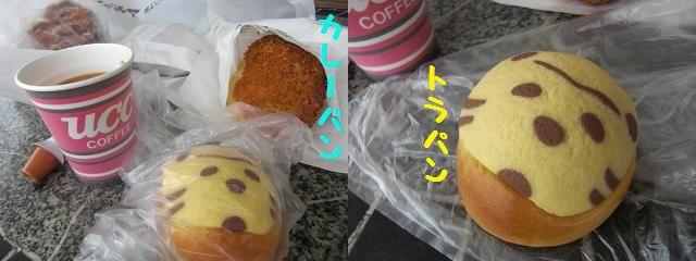 PICT0001_20120618204453.jpg