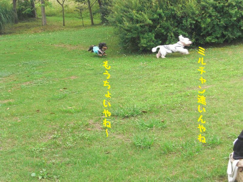 PICT0014_20120628110417.jpg