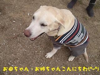 20121201kotarou1.jpg