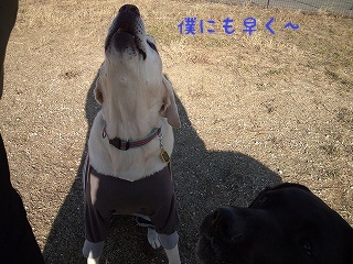 20121201kotarou3.jpg
