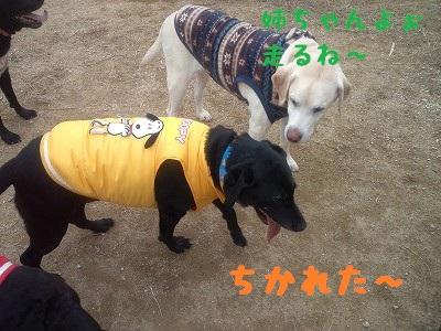 20130113angekotarou1.jpg
