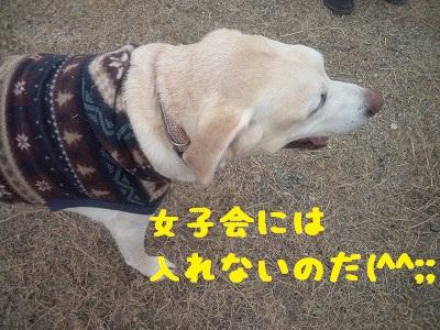 20130113kotarou1.jpg