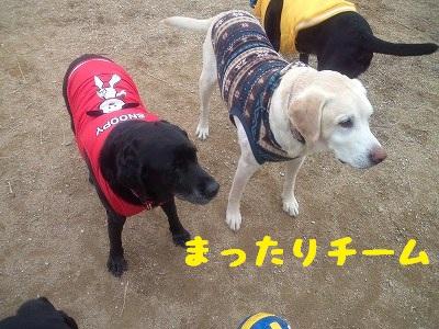 20130113marinekotarou3.jpg