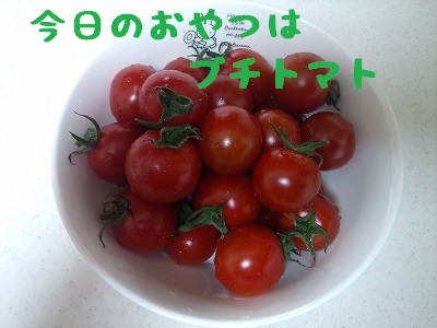 20130322_1.jpg