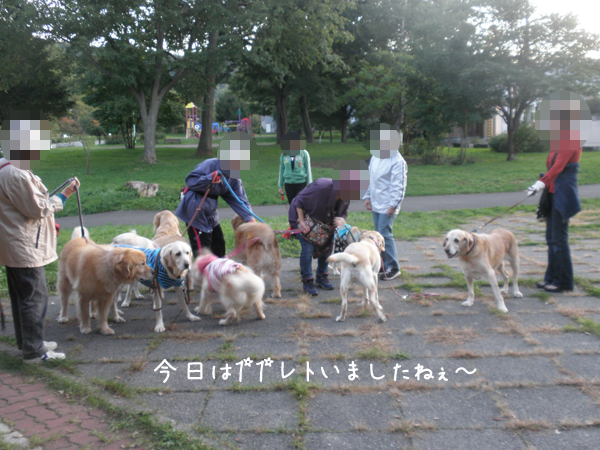11_20121009232940.jpg