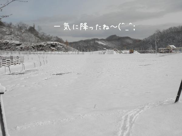 1_20121119194200.jpg
