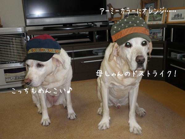 2_20121010213410.jpg