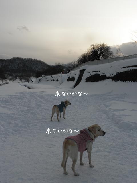 2_20121221235734.jpg