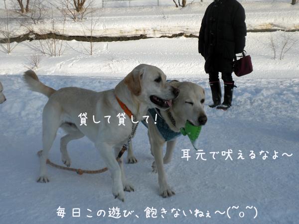 2_20130213223831.jpg