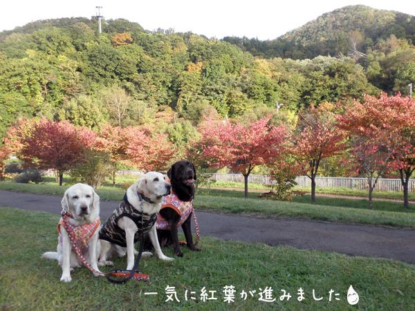 3wan_20121020205332.jpg