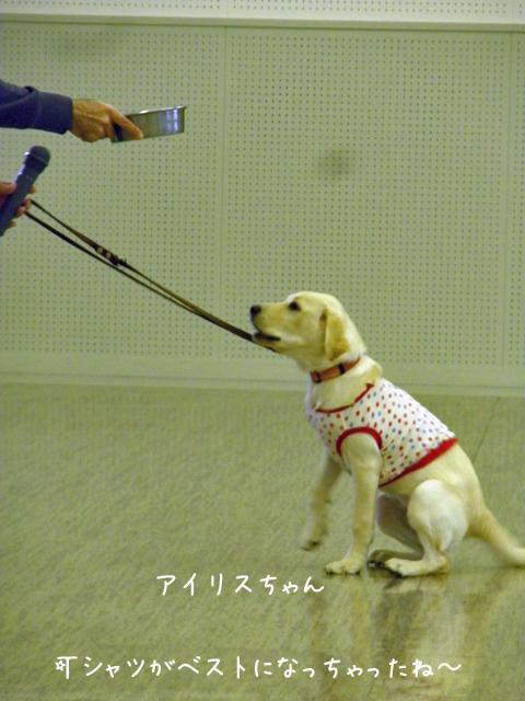 airisu_20121028202106.jpg